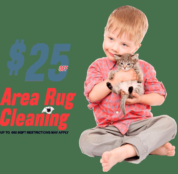 Rug Cleaning Houston TX: Best Rug