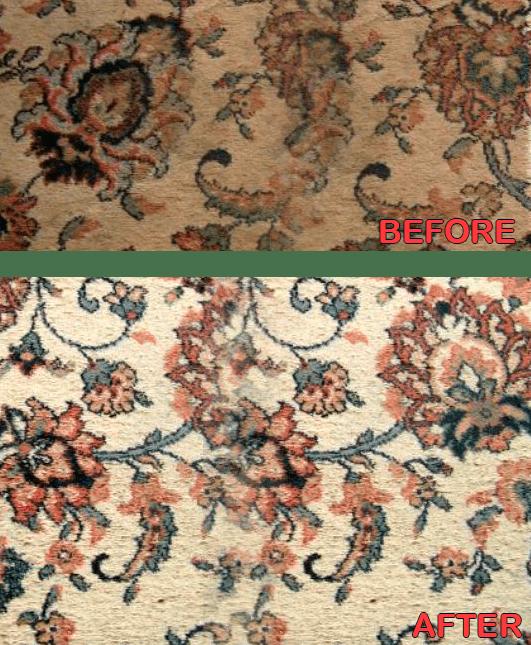 Best Oriental Rug Cleaner Houston Carpet Vidalondon